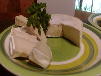 North America Vegan Cheese Market To Reach Valuation Of US$ 1.4 Bn By 2031 - Stock Market Publicist